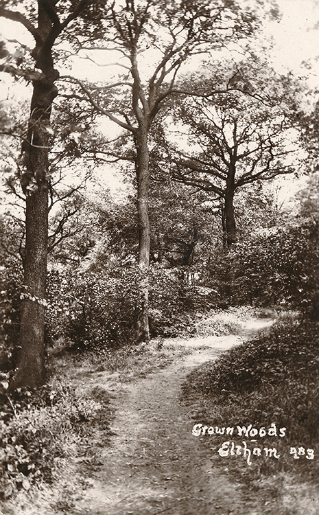 Crown woods, Eltham, 1932