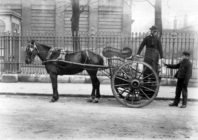 Devonshire Dairy milk cart, Greenwich, 1884