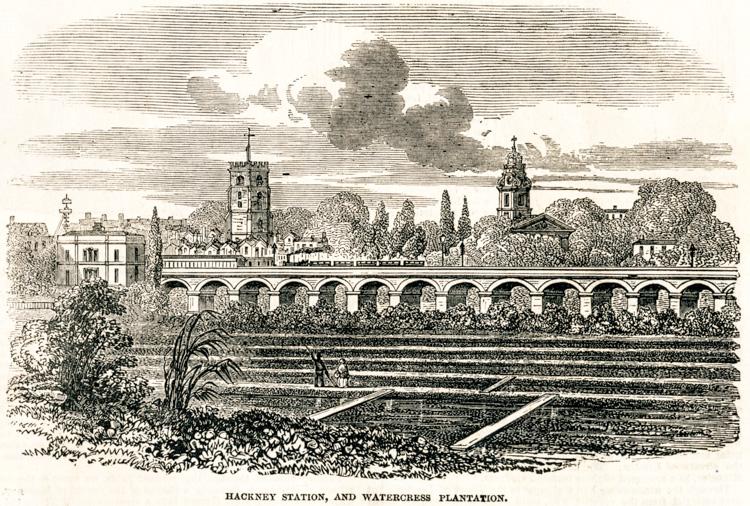 Hackney Station, 1851