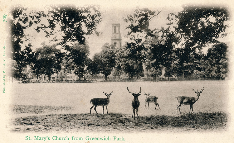 St Mary's church from Greenwich Park, 1905